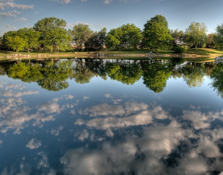 Summer Reflection at Lake Regency
