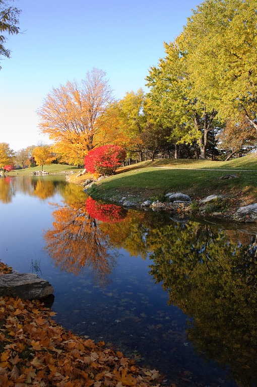 Fall colors at Lake Regency in Omaha